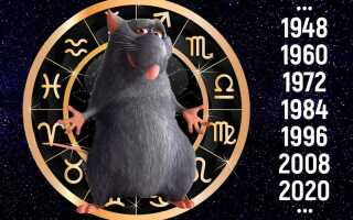 Гороскоп на 2019 год по году рождения Крыса