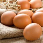 Куриные вареные яйца: польза и вред для мужчин, женщин, детей.