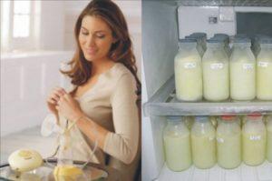 Как правильно хранить сцеженное грудное молоко