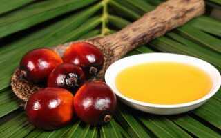 Пальмовое масло: польза и вред