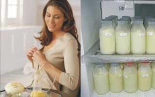 Сколько, как и где хранить грудное молоко после сцеживания?
