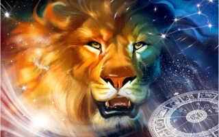 Гороскоп для Льва на 2019 год для женщин, мужчин и детский – что ждет представителей знака в год Желтой Свиньи (Кабана)