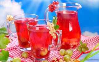 Компот из красной смородины на зиму: 6 рецептов приготовления компота