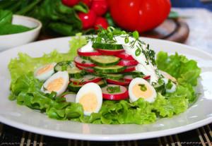 salat-iz-redisa-i-ogurcov
