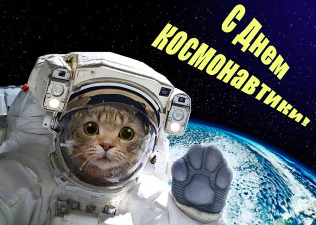 нападают день космонавтики смешные поздравления картофель, рано