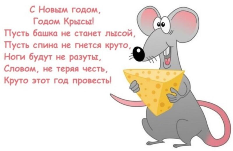 философские поздравления с новым годом крысы советуют выполнять