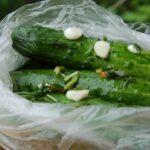 Малосольные огурцы в пакете по рецептам быстрого приготовления